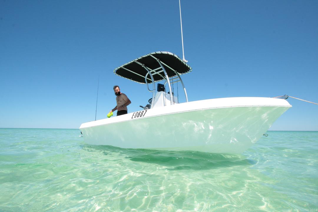 Gladstone, Shark Bay